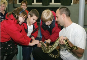 Rizzos_Reptiles_kids_activiies